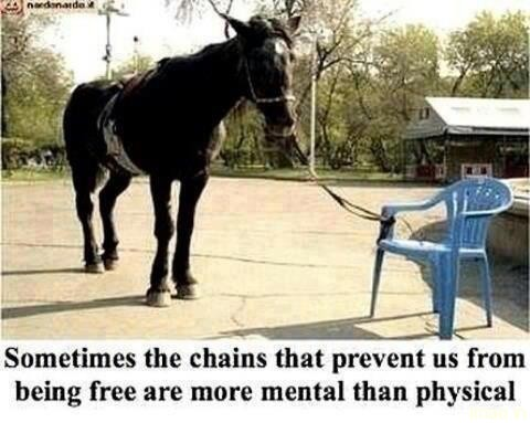 chains-prevent-us-being-free