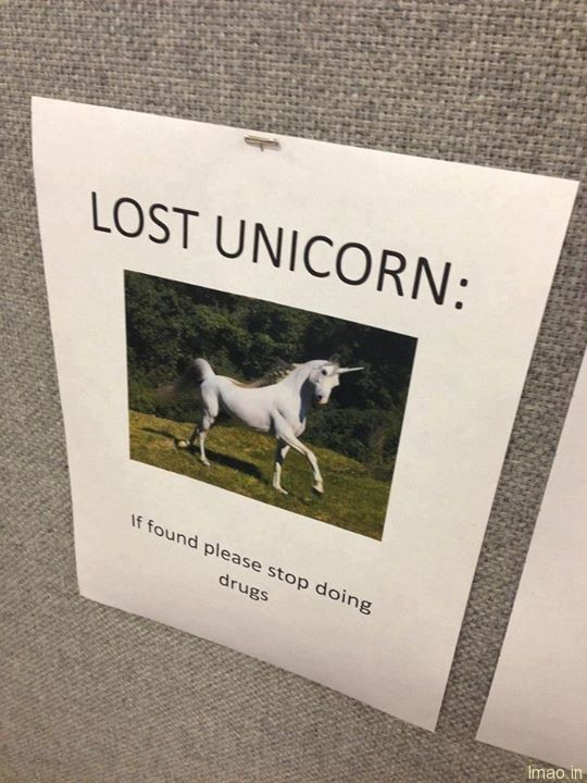lost-unicorn humorous photos