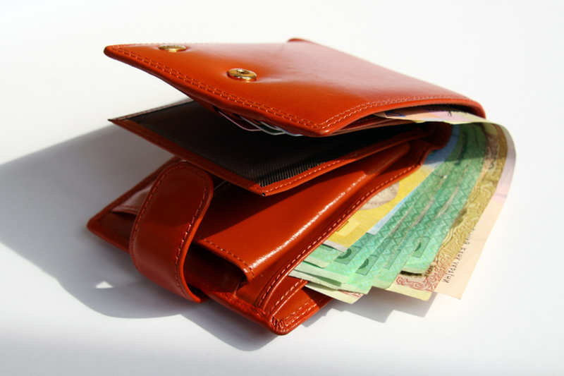 Money in Wallet for travelling